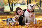 With dogs — Stock Photo