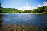 Nehir yaz peyzaj — Stok fotoğraf