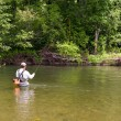 Stock Photo: Fishermcatches fly fishing