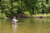 Pescador captura pesca com mosca — Foto Stock