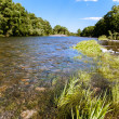 Summer landscape with the river — Stock Photo