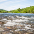 Stok fotoğraf: Summer landscape with the river.