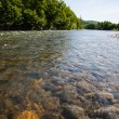 Stock Photo: Summer landscape with the river.