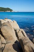 Paisagem de verão linda da costa do mar. — Foto Stock