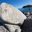 Summer landscape of rocky sea coast. — Stock Photo #31600969