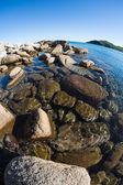 Summer landscape of sea coast. — Stock Photo