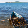 Boat with seaweed kelp — Stock Photo
