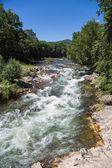 река летний пейзаж — Стоковое фото