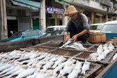 Fisherman prepares fish for drying in the fishing port in Macau — Stock Photo
