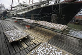 Dried sea fish on the pier in the port of Macao — Stock Photo