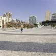 Landmark of the city with the Portuguese houses and paving ston — ストック写真