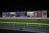Diamond Vision Television screen на Sha Tin Racecourse — Stock Photo