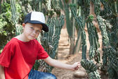 Boy among cacti — Foto de Stock