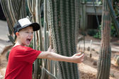 Boy jokingly hugging cactus and screams. — Stock Photo
