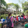 Pupils and teachers at the Singapore Zoo — Stockfoto