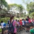 Pupils and teachers at the Singapore Zoo — Stock fotografie