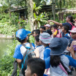 Pupils and teachers at the Singapore Zoo — Foto Stock
