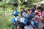 Pupils and teachers at the Singapore Zoo — Stock Photo