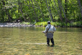 Fisherman catches of salmon fly fishing — Stock Photo