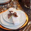 Wedding dinner detail — Stock Photo #14387227