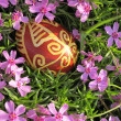 Croatitraditional easter egg on pink flowers — Stock Photo #22919640