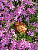 Croatian traditional easter egg on pink flowers — Stock Photo