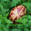 Royalty-Free Stock Photo: Croatian Easter egg made with traditional decorating techniques