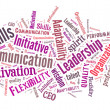 Business skills word cloud — Stock Photo