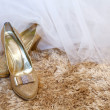 Stock Photo: Golden wedding shoes on a carpet with copy space on the right