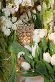 Crystal candle holder surrounded by white tulips — Stock Photo