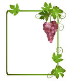 Green frame with a bunch of grapes - vector — Vettoriale Stock