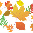 Bright autumn leaves - vector — Stock Vector