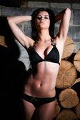 Kadın ve yakacak odun — Stok fotoğraf