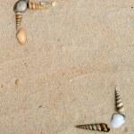 Shells on sand frame — Stock Photo #2344726