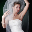 Young bride — Stock Photo #2904408
