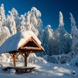 Winter Landscape — Stock Photo #19940985