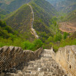 Great wall. China — Stock Photo