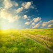 Summer landscape with green grass, road and clouds — Stock Photo #13845766
