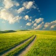 Summer landscape with green grass, road and clouds — Stock Photo #13845889