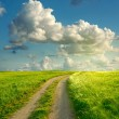Summer landscape with green grass, road and clouds — Foto Stock