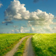 Summer landscape with green grass, road and clouds — Stockfoto