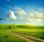 Paesaggio estivo con erba verde, strada e nuvole — Foto Stock