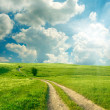 Summer landscape with green grass, road and clouds — Stock Photo #16333485