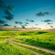 Summer landscape with green grass, road and clouds — Stock Photo #16333511