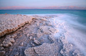 Dead Sea coastline — Stock Photo