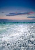 Dead Sea coastline — Stock Photo
