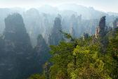 Zhangjiajie nationaalpark, china — Stockfoto