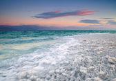 Littoral de la mer morte — Photo