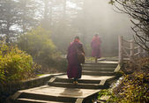 Sichuan, China - APRIL 12: Two monks climbing up to holy mount — Stock Photo