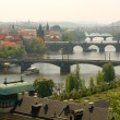 Stock Photo: Prague's bridges